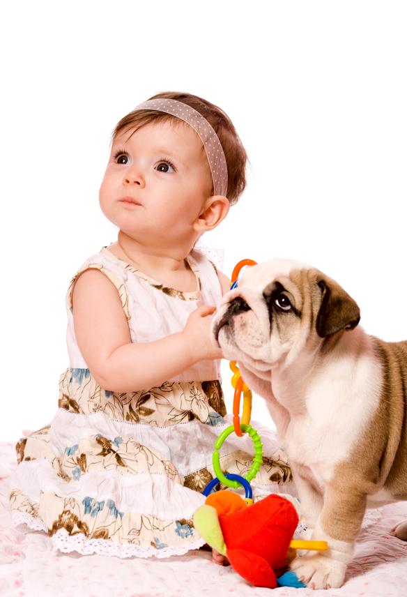 Beneficios de crecer con una mascota desde pequeños