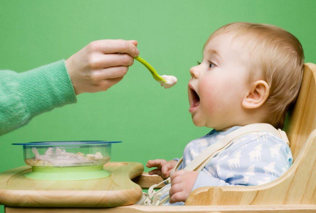 recetas comida solida para bebe
