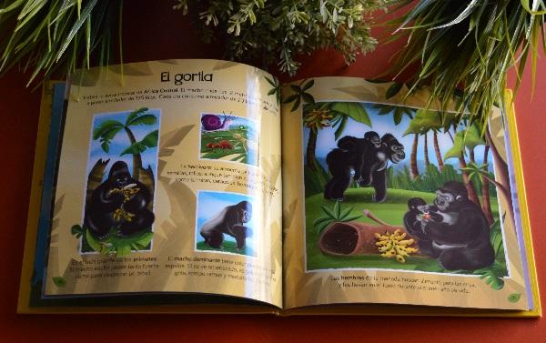 Libros para niños de 3 a 9 años