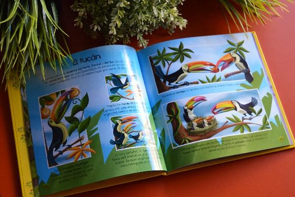 Libros infantiles sobre naturaleza