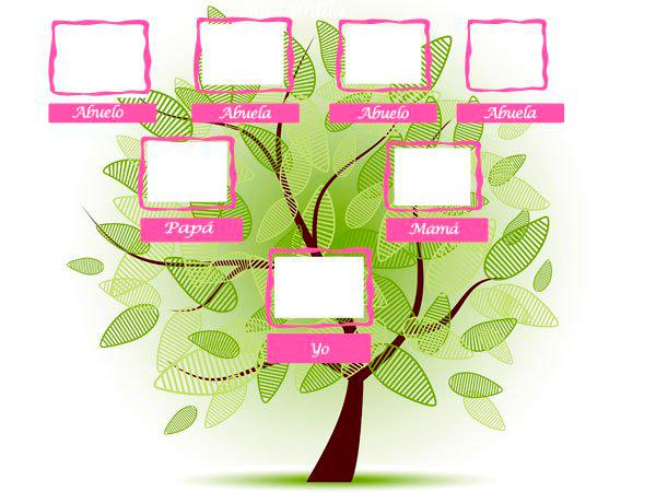 cómo hacer un árbol genealógico