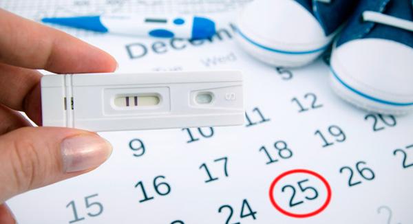 test ovulación embarazo