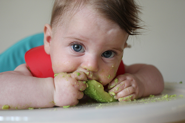 Baby lead weaning
