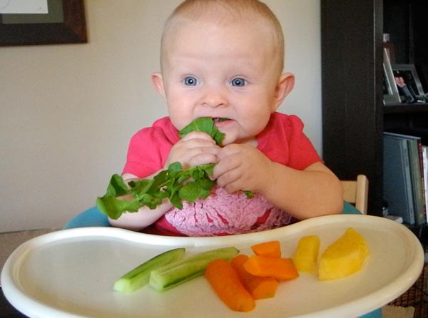 Baby led weaning recetas