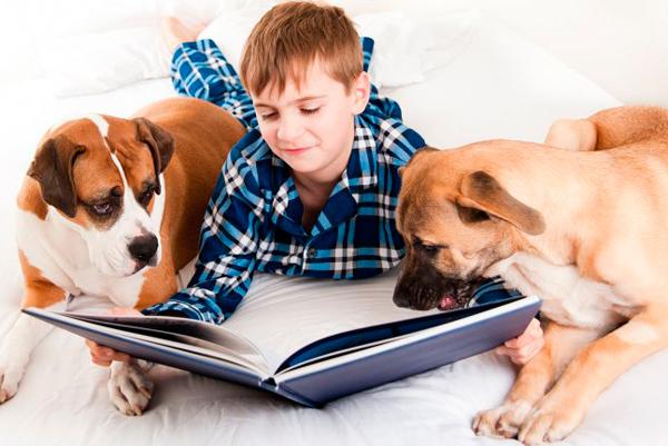 Enseñar a leer a un niño
