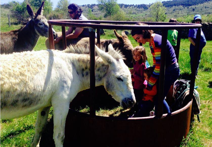 turismo rural con niños madrid