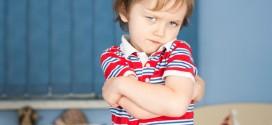 Trastorno negativista desafiante en niños; Pautas para padres