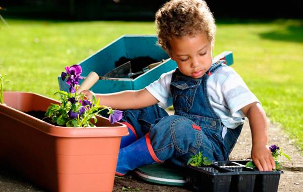 Plantas para ni os cu les son las m s f ciles de cuidar - Todo sobre las plantas ...