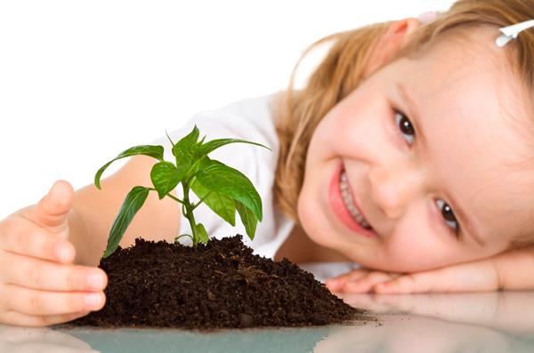 plantas para niños pequeños