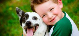 Las 10 mejores razas de perros para niños pequeños