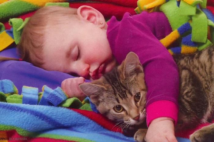 el niño gato juntos