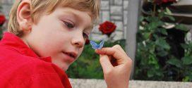 Piel de mariposa en niños; Síntomas, causas y tratamiento