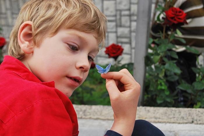 piel mariposa niños