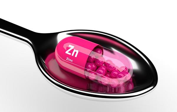 ¿cuáles son los alimentos con más zinc?