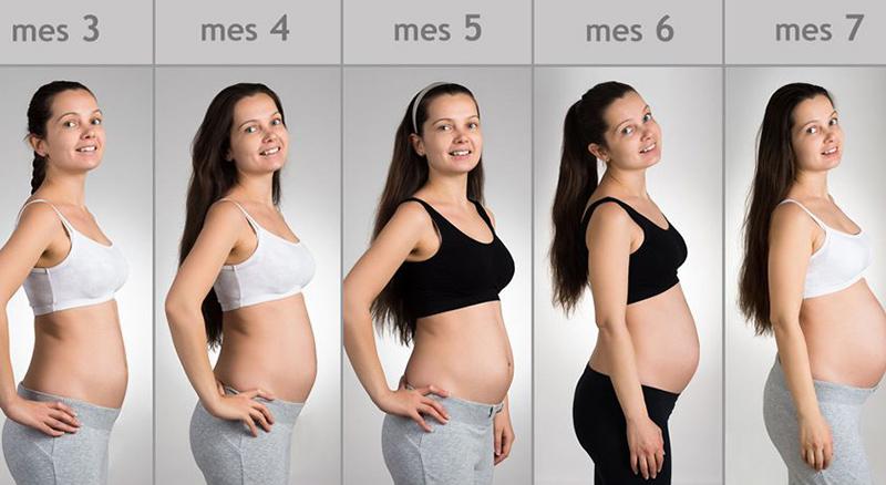 embarazo 21 semanas peso