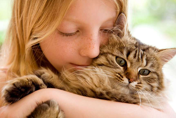 ¿qué aportan los gatos a los niños?