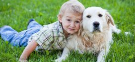 7 beneficios de las mascotas para niños