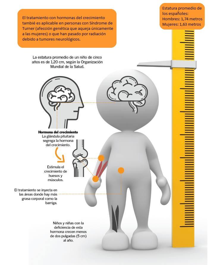 hormona de crecimiento en niños infografia