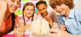 7 ejercicios para estimular los hemisferios cerebrales en niños