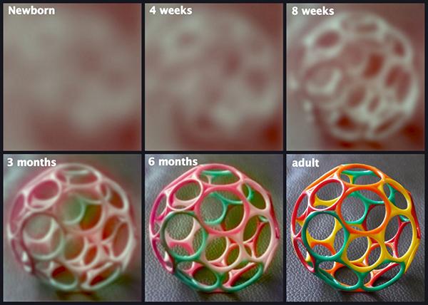 en que tiempo ve un bebe recien nacido