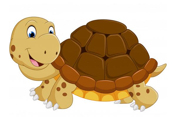 fotos de tortugas infantiles
