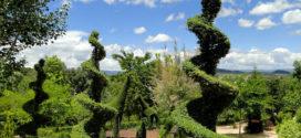El Bosque Encantado de Madrid; ¡Guía completa!