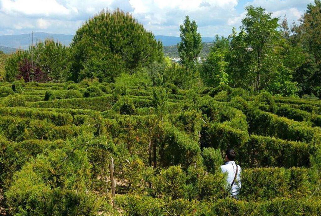 laberinto el bosque encantado madrid