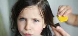 Como evitar el contagio de piojos en niños