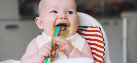 ¿Qué hacer cuando mi bebé no come verduras?