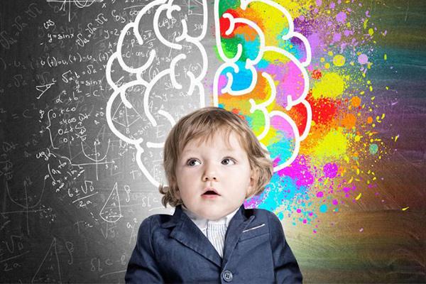 como funciona el cerebro para niños