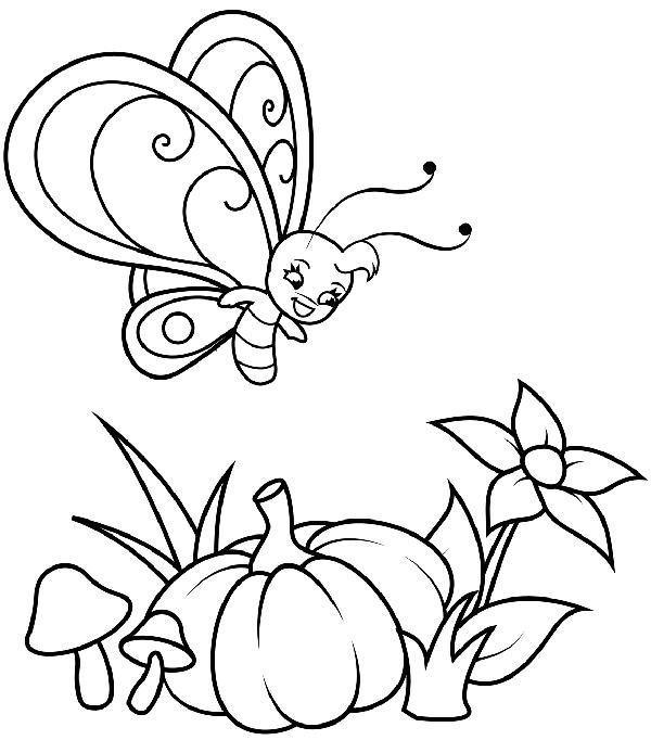 dibujo de mariposa infantil