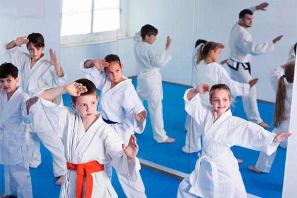 judo o karate para niños